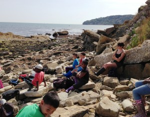 Swanage rocks2